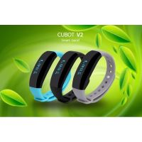 CUBOT V2 0.88 OLED IP65 Bluetooth Smart band Gray